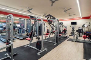 One Bedroom Apartments for Rent in Houston, TX - Fitness Center (6)